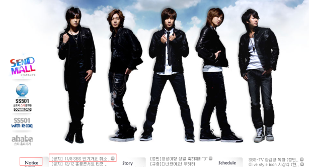 dsp site ss501